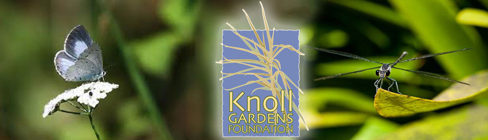 The Knoll Gardens Foundation
