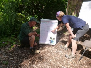 Knoll Gardens' owner, Neil Lucas and Katie Wilkinson from the DWT see what's been sighted at a recent bioblitz in the gardens copy