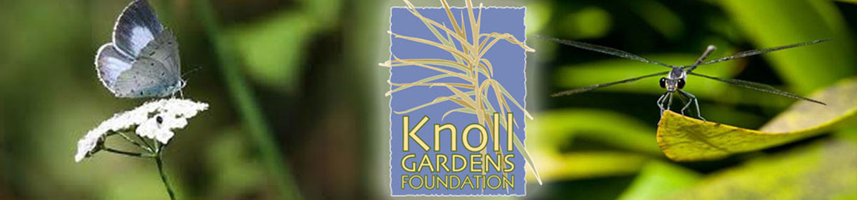 Knoll Gardens Foundation